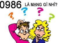0986-la-mang-gi-va-y-nghia-phong-thuy-cua-no-1