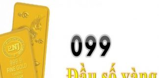 099-la-cua-mang-nao-vi-sao-ban-nen-huu-sim-voi-dau-099-2